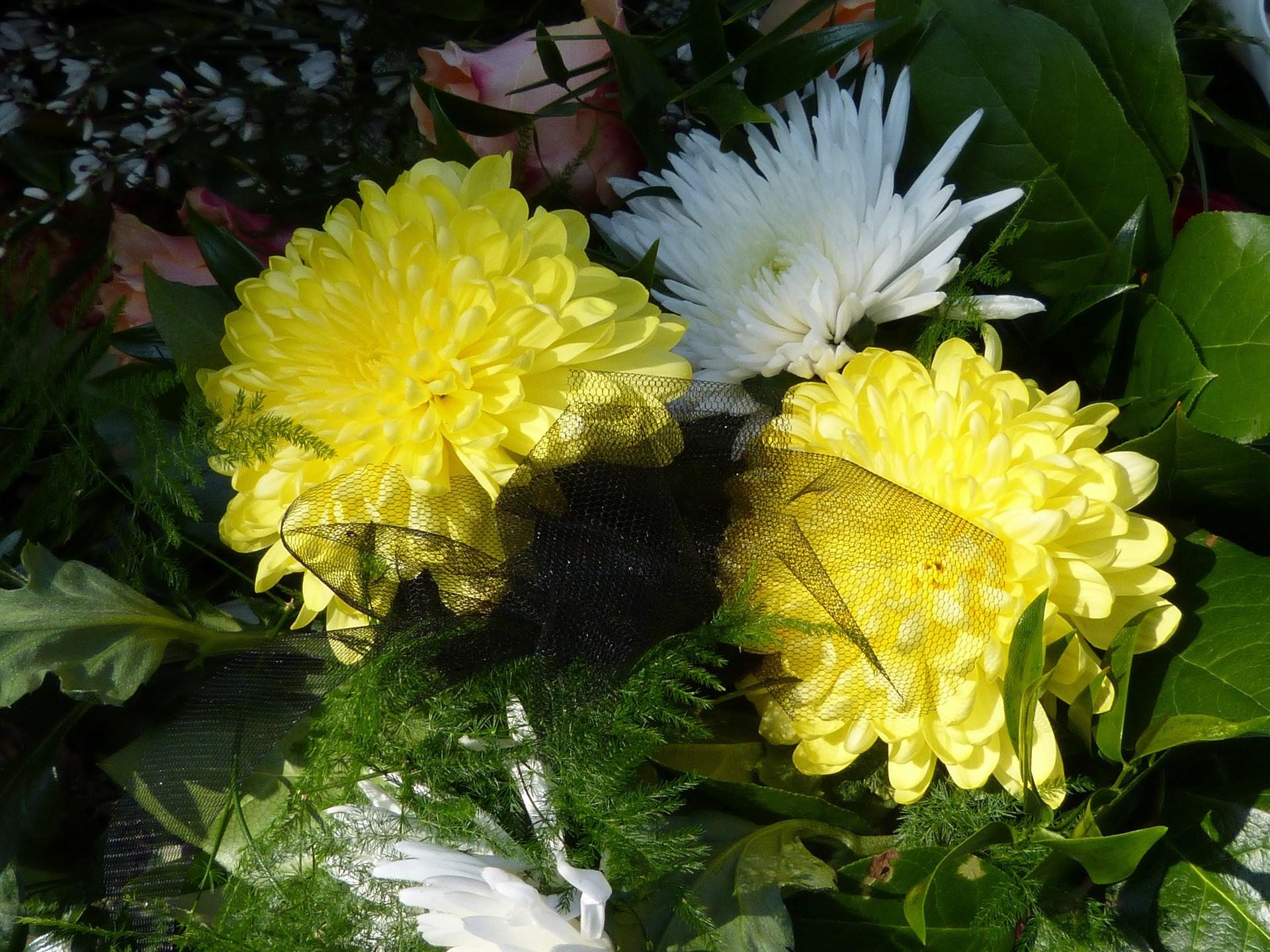 2017 Spring Home and Garden Show