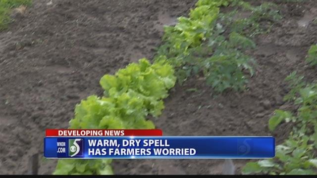 Farmers struggling from lack of rain
