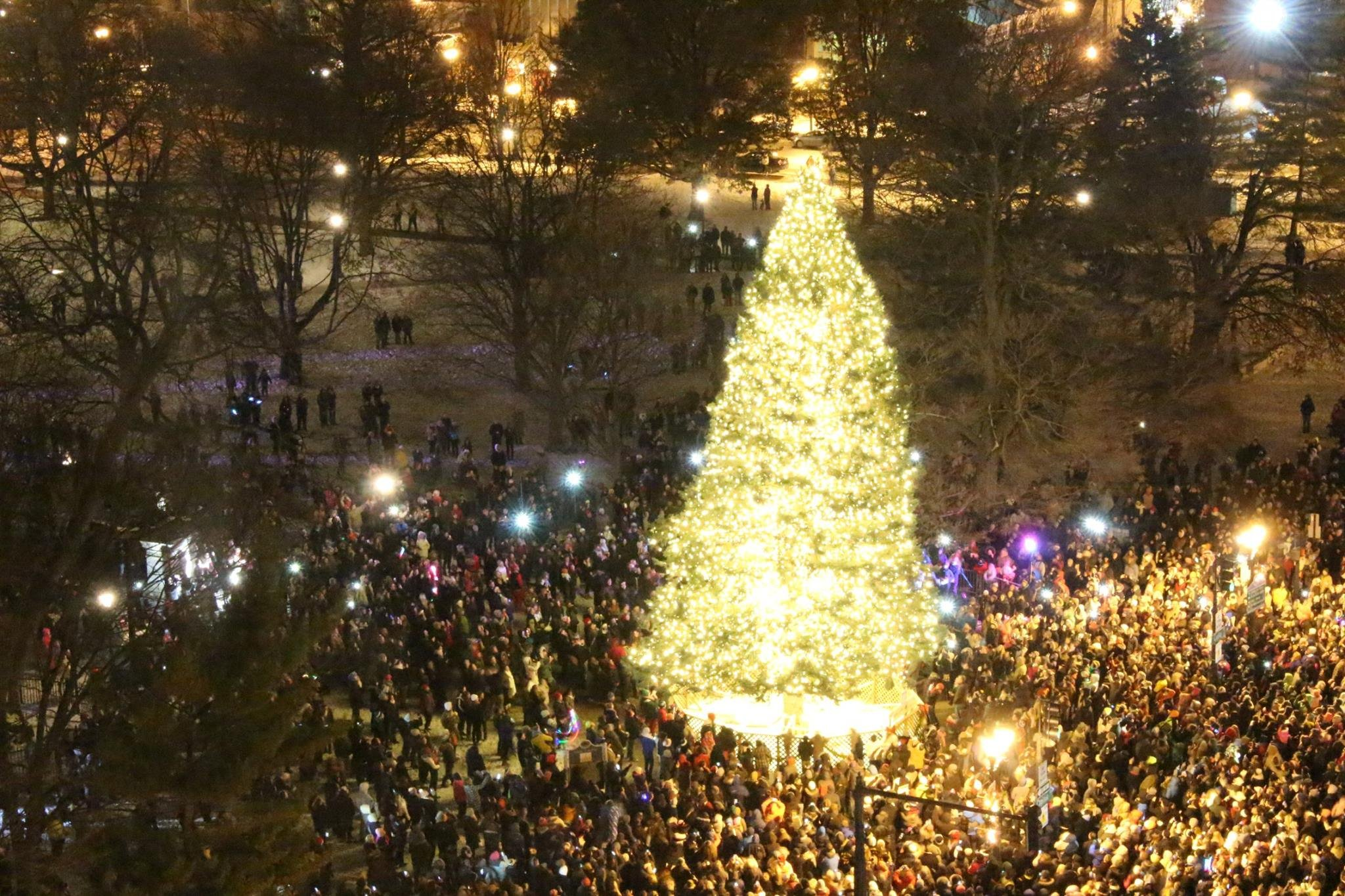 A photo of the state's Christmas tree in 2014. (Source: State of Michigan)