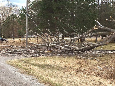 Beaver Road in Kawkawlin (Source: WNEM)