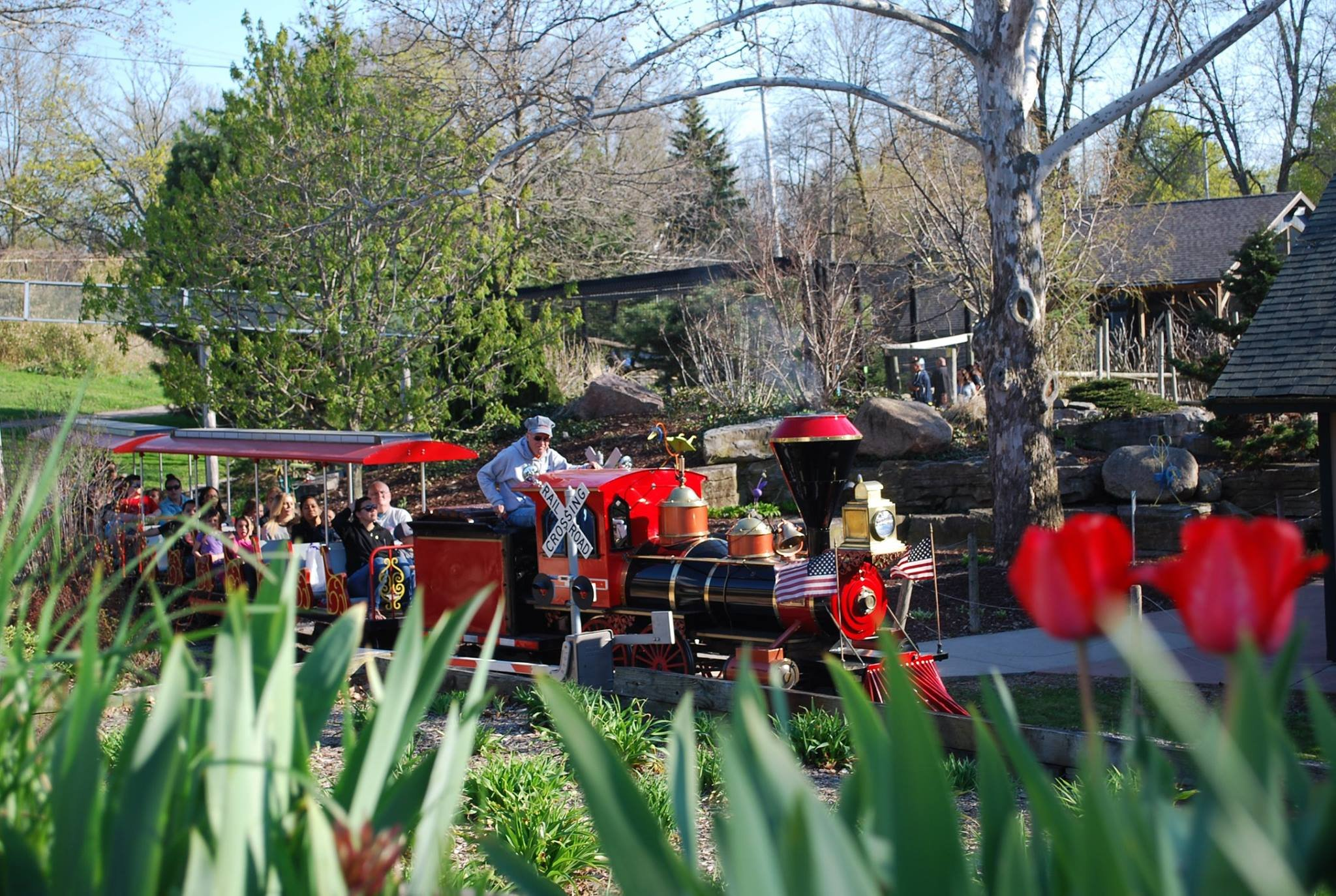 Courtesy of Children's Zoo at Celebration Square