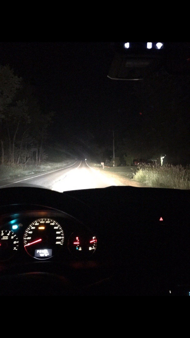 Source: In this photo from a Haslett resident to the DNR, the cougar is just behind the mailbox on the right side of the road.