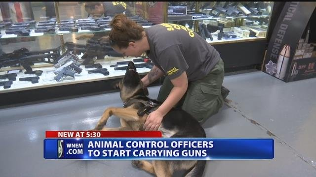 Video: Animal control officers to carry guns