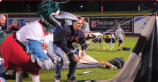 Source: Great Lakes Loons