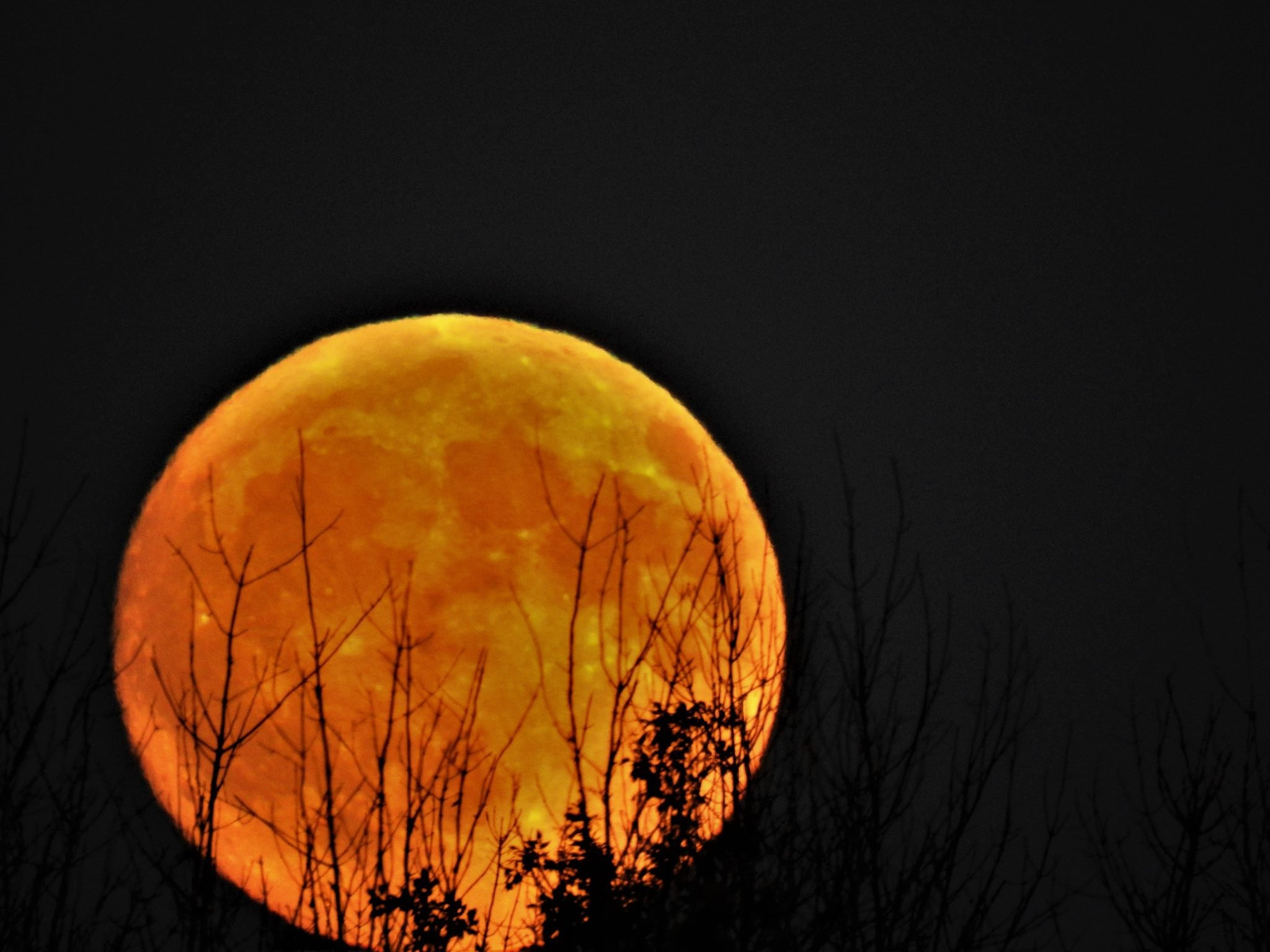 Harvest Moon over Bay City, 10/5/2017. Photo by: Kathy Woods Booth