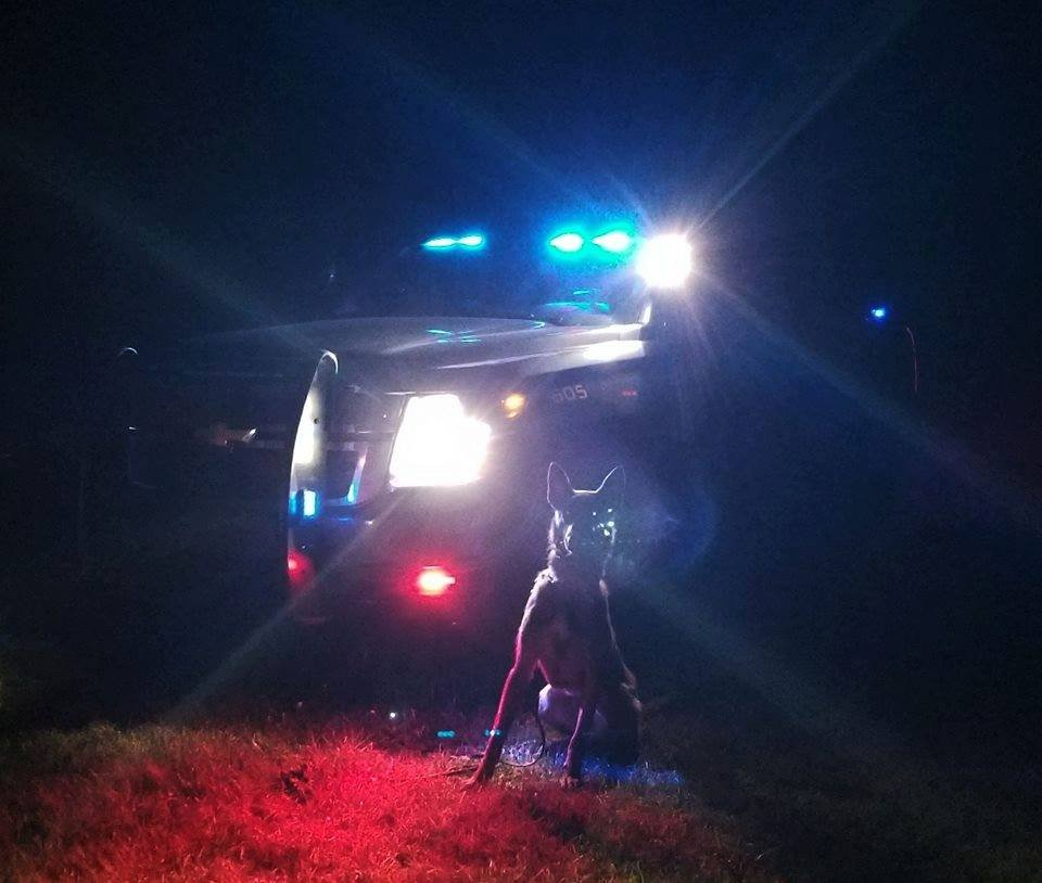 Source: Arenac County Sheriff's Department