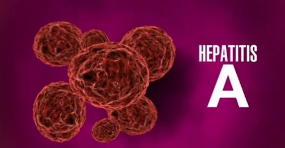 Image Result For Hepatitis A Case Confirmed In Michigan Restaurant Worker