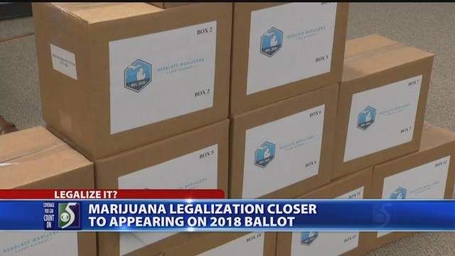 Video: Group submits signatures to legalize marijuana in Michigan
