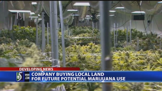 Video: Company buys 25 acres to build marijuana park