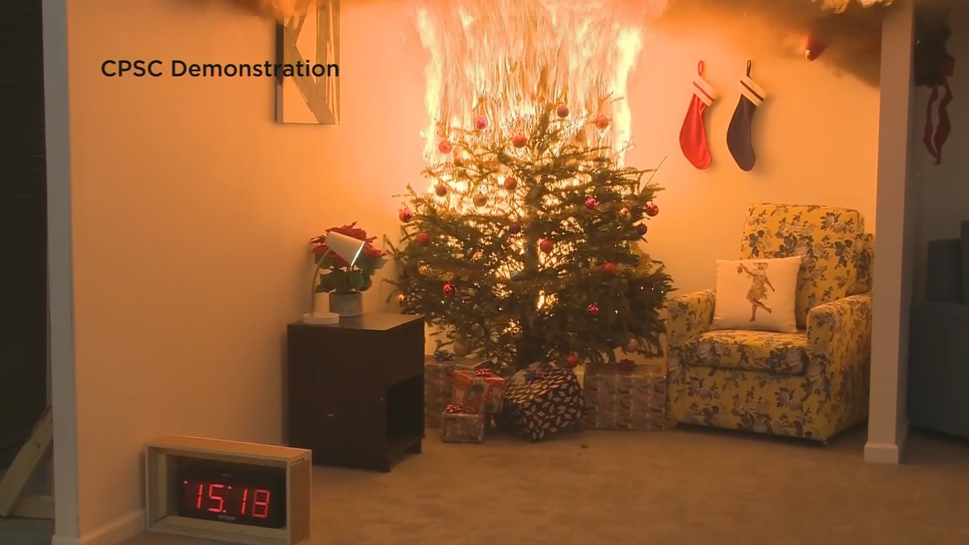 Madison firefighters show exactly why you need to water your Christmas tree