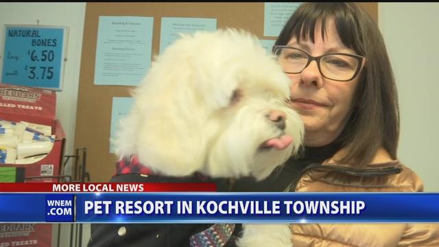 Video: Pet resort opens in Kochville Twp