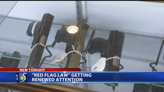 Video: 'Red flag' law getting renewed attention