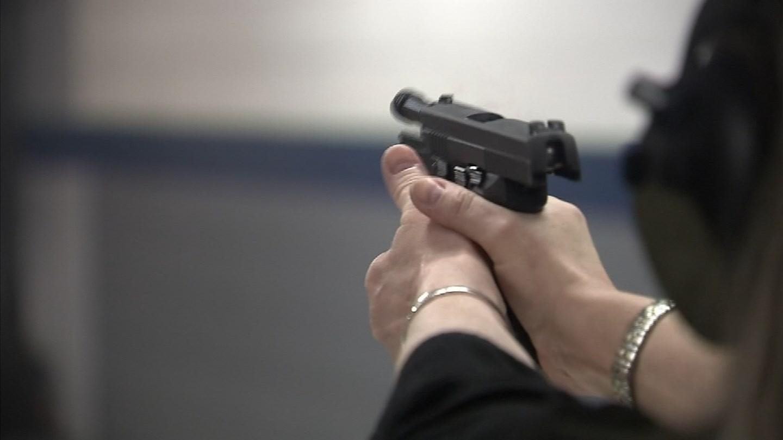 Michigan House to explore arming teachers,