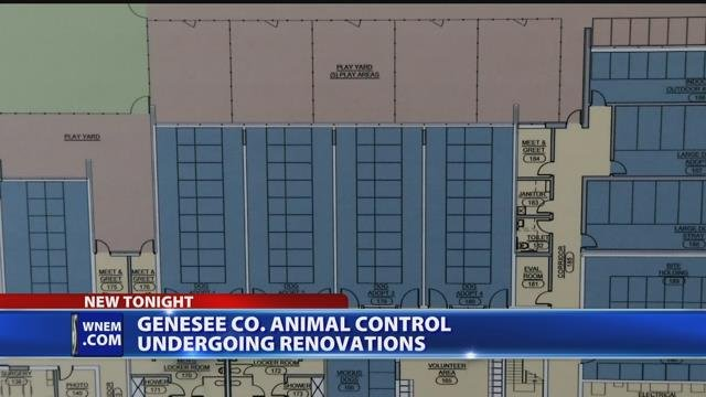 Video: Genesee Co. animal control undergoing renovations