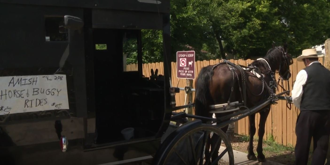 Amish man starts 'Uber' service with his buggy