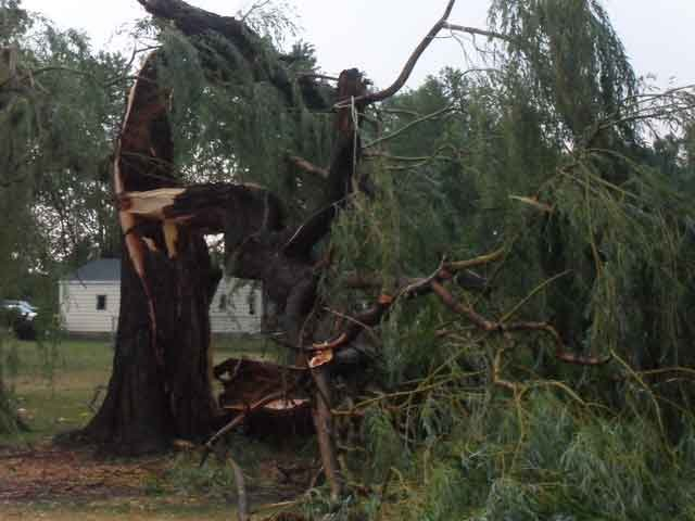 Viewer Photo in Corunna