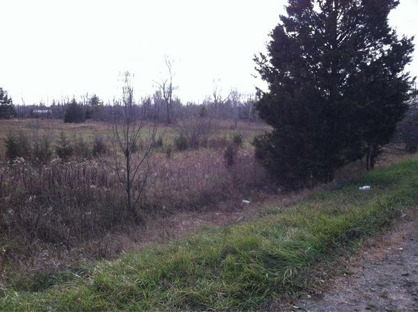 The ditch where the woman was found early Thursday morning.