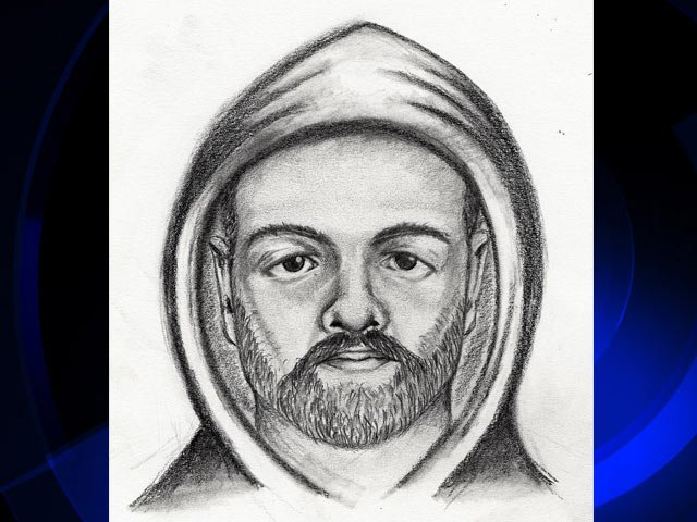 Michigan State Police sketch of the robbery suspect.