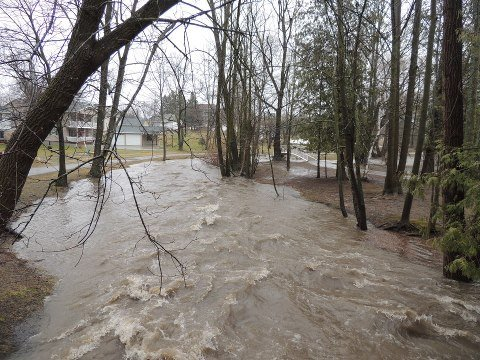 Flooding in Mid-Michigan on Thursday.