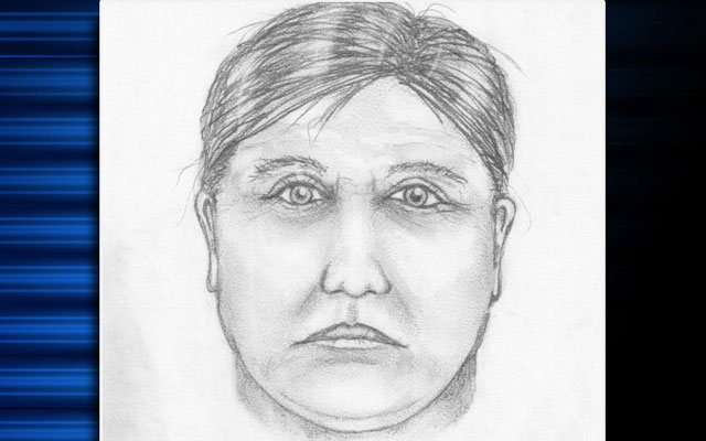 The sketch of the suspect released by police on Friday.