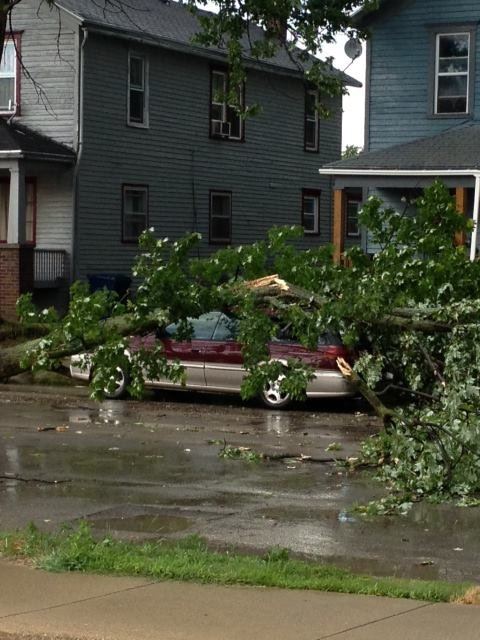 This car was damaged by a falling tree in Bay City as the storms pushed through on Friday.