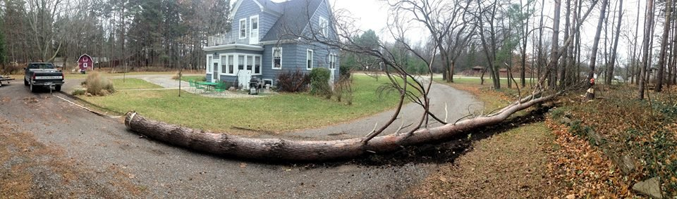 Storm damage in Mid-Michigan.