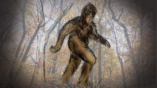 An artists' rendering of Bigfoot.