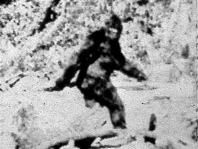 Alleged Bigfoot photo from Oct. 20, 1967 in northern California