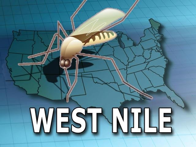 Man contracts Nevada's first West Nile case of 2017