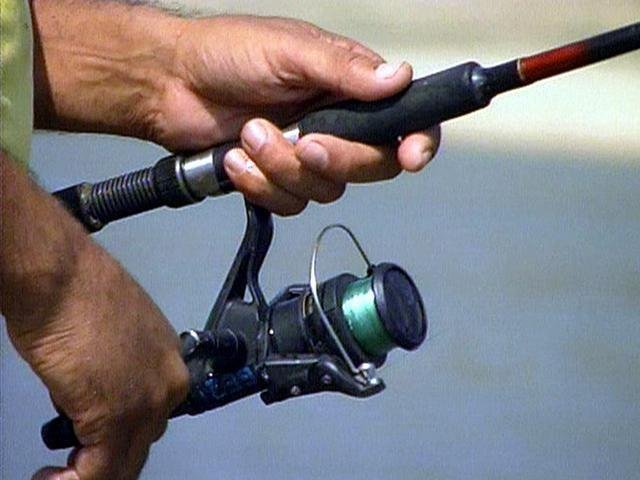 Dnr proposes new fishing regulations for Sc dnr fishing license